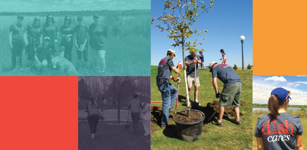 DISH Cares: volunteers planting a tree